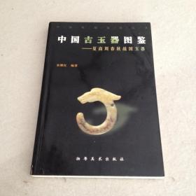 中国古玉器图鉴——夏商周春秋战国玉器