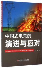 中国式电荒的演进与应对