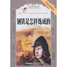 钢铁是怎样炼成的 专著 (苏)尼·奥斯特洛夫斯基原著 肖丹改写 gang tie shi zen