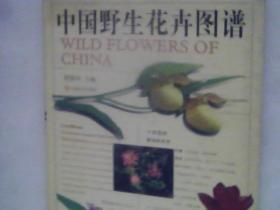 中国野生花卉图谱