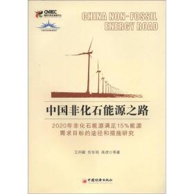 中国非化石能源之路