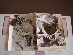 越南排华照片8张