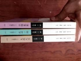 -王道剑(乾坤一掷+大战天竺+云锦袈裟 3   册   1版1