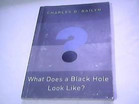 what Does a Black Hole Look Like?