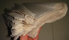 老纸 大纸