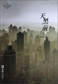 文汇麦杰珂新锐作家系列:天黑前