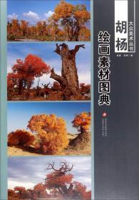大众美术丛书·胡杨:绘画素材图典