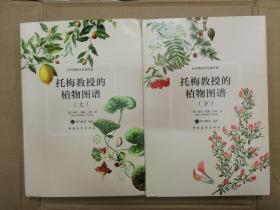 托梅教授的植物图谱(上下)