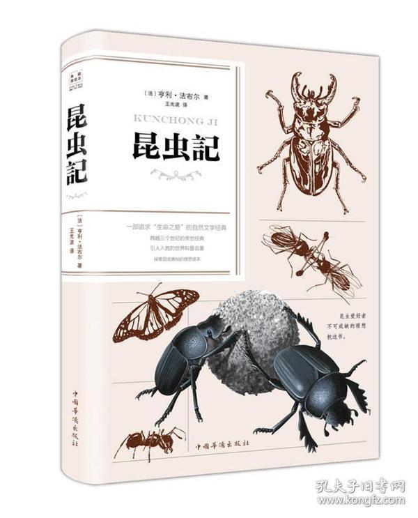 昆虫记(纯美悦读·32开彩色精装)
