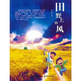 田野上的风—少儿纯美小说系列
