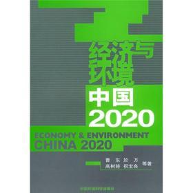经济与环境:中国2020