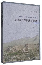 新视野·文化遗产保护论丛(第2辑):文化遗产保护法制建设