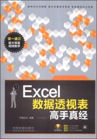 Excel数据透视表高手真经