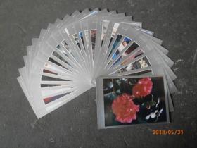 云南少数民族人物肖像及民族服饰   明信片 25张