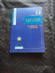 可见的与不可见的:当代法国思想文化译丛