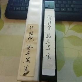 录像带  郭怡宗花卉写生  【中国书画函授大学旧藏】23号