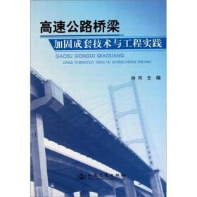 高速公路桥梁加固成套技术与工程实践...
