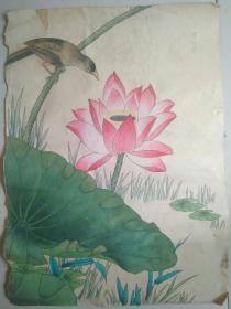 早期花鸟原稿