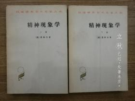精神现象学(上下卷全,汉译世界学术名著丛书)