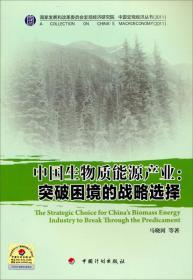 中国宏观经济丛书·中国生物质能源产业:突破困境的战略选择(2011)