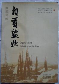 《崛起中的自贡盐业》