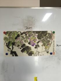 广西画家 莫友高精美国画:葡萄 一幅  70CM*34CM