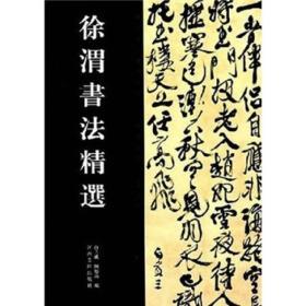 中国历代书法名家作品精选系列:徐渭书法精选