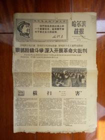 哈尔滨战报(1968-03-22)