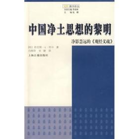 中国净土思想的黎明:净影慧远的《观经义疏》【一版一印】