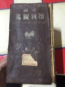 中国植物图鉴(巨厚) 民国本