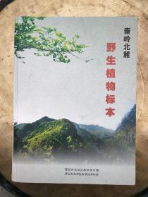 秦岭北麓野生植物标本