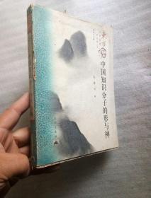 中国知识分子的形与神