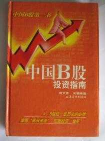 中国B股投资指南