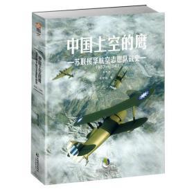 中国上空的鹰:苏联援华航空志愿队战史1937-1941