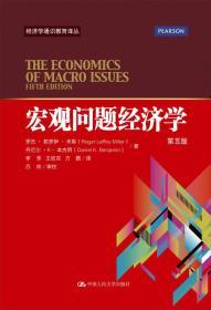 宏观问题经济学