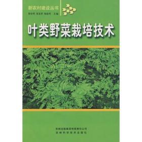 叶类野菜栽培技术