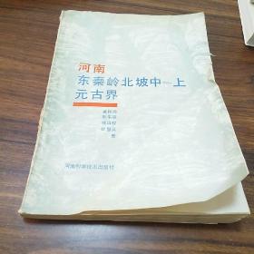 【正版现货】河南东秦岭北坡中―上元古界
