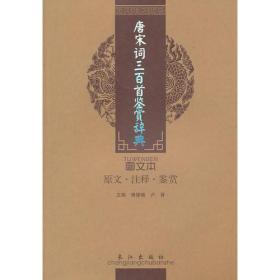 唐宋词三百首鉴赏辞典