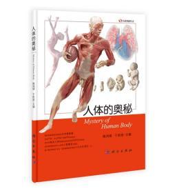 生物奥秘丛书:人体的奥秘