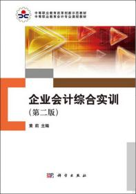企业会计综合实训(第二版)