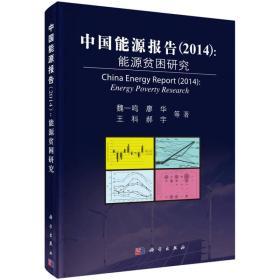 中国能源报告(2014):能源贫困研究