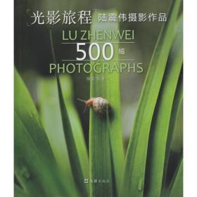光影旅程——陆震伟摄影作品500幅