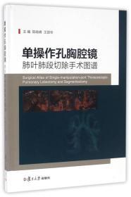 单操作孔胸腔镜肺叶肺段切除手术图谱