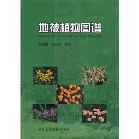 地被植物图谱 9787112086825