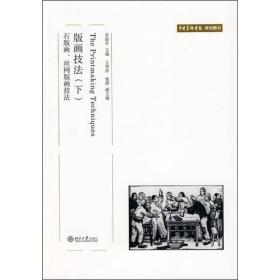 版画技法 下 石版画、丝网版画技法 苏新平 9787301139103 北京大学出版社