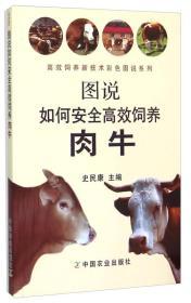 图说如何安全高效饲养肉牛