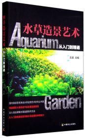 水草造景艺术:从入门到精通