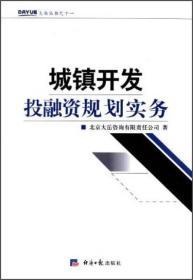 大岳丛书:城镇开发投融资规划实务