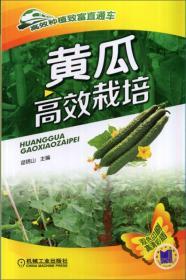 黄瓜高效栽培-双色印刷高清彩插