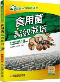 食用菌高效栽培/高效种植致富直通车